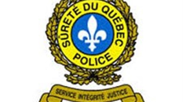 Arrestation à Danville